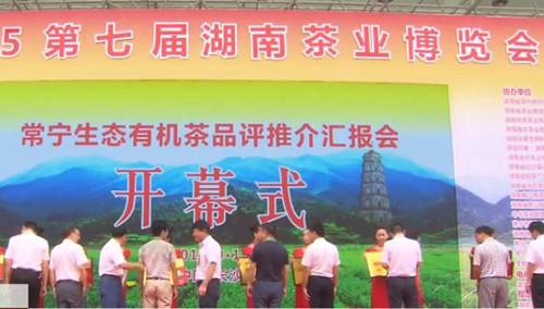湖南省第七届茶博会开幕 中端市场成茶企首选